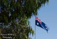 What could be more Australian than our flag sorrounded by gum trees.
