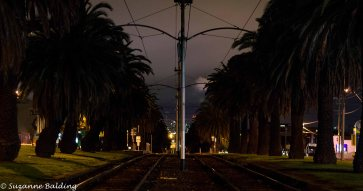 Tram lines towards Melbourne