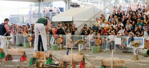Wood-chopping still draws a crowd
