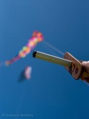 Kites. :-)